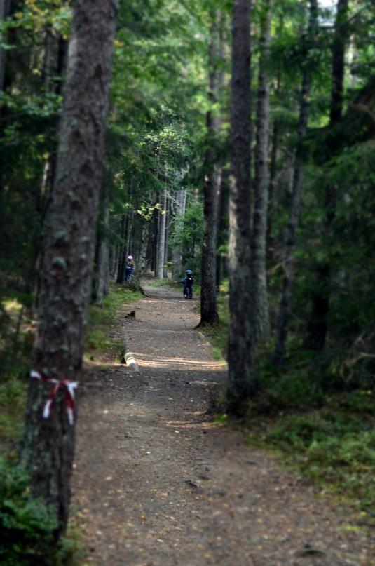 Härligt att kunna cykla i skogen för de som inte orkar gå